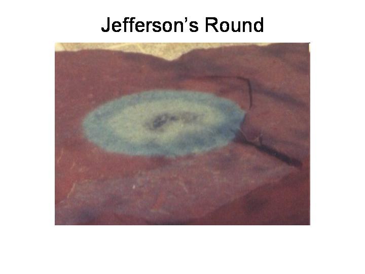 Jefferson's Round